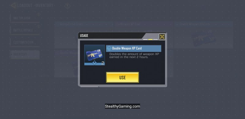 2 HOUR DOUBLE WEAPON XP CARD