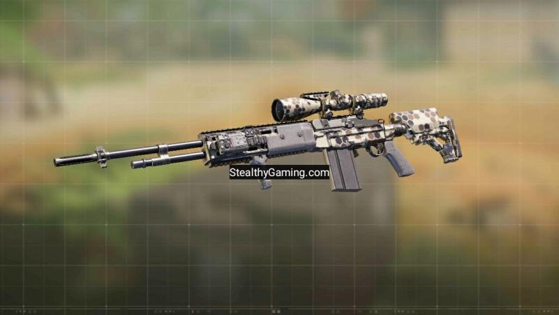 m21 ebr gunsmith loadout